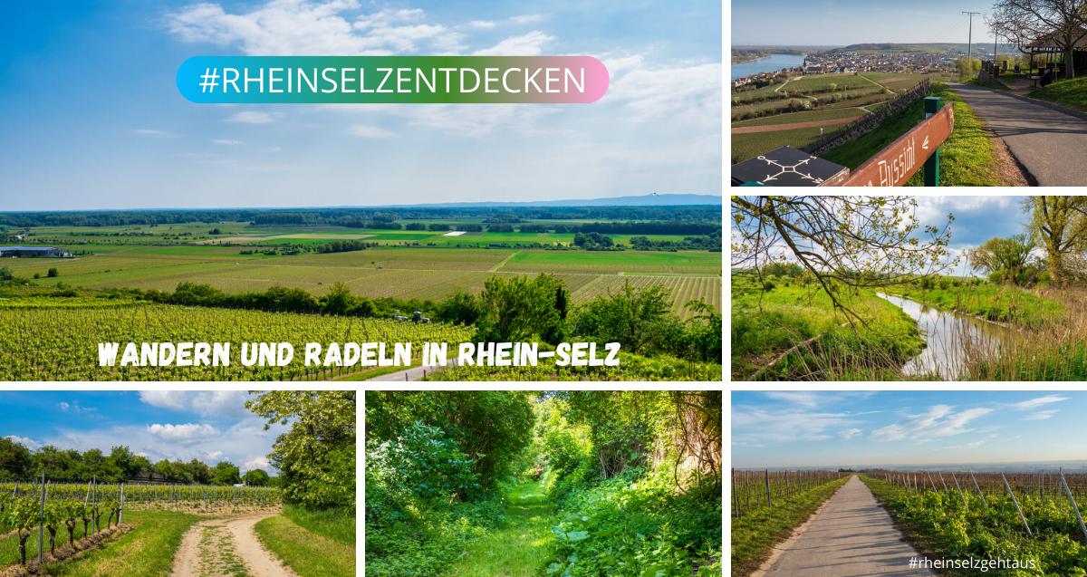 Wandern und Radeln in Rhein-Selz