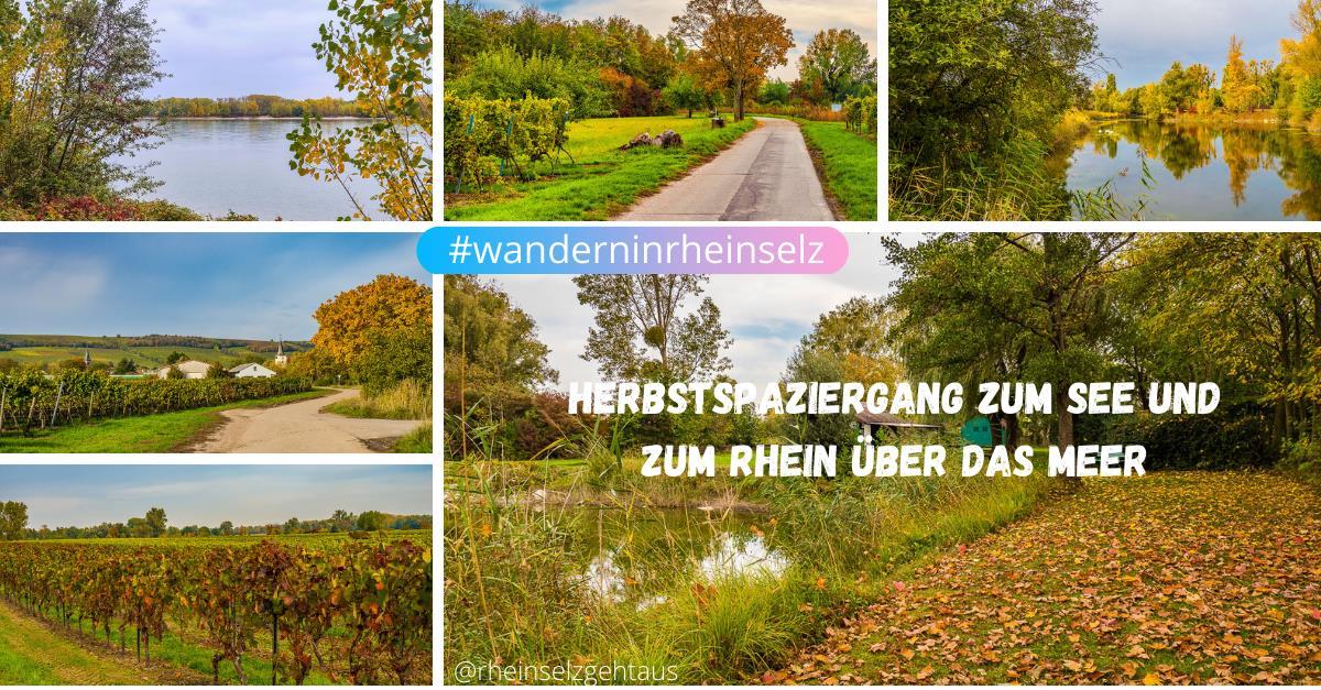 Herbstspaziergang-rund-um-Dienheim