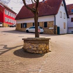 image de Der alte Dorfbrunnen