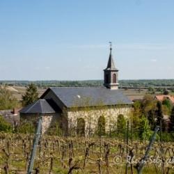 image de Katholische Kirche St. Vitus