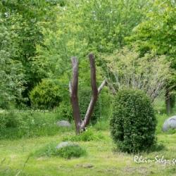 image de Der Spielplatz in Hillesheim